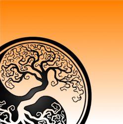 Tanguy PAVIER – Psychopraticien – Psychothérapie Biodynamique – LORIENT